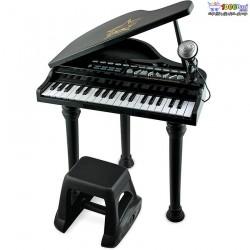 ست پیانو و میکروفون مشکی وین فان Winfun