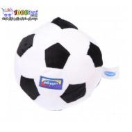 توپ فوتبال جغجغه ای پولیشی Playgro